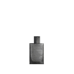 Burberry BRIT RHYTHM MEN Eau Toillete